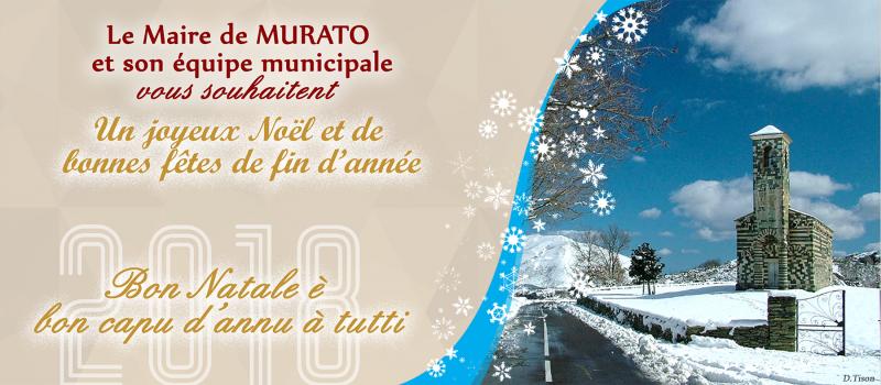 MURATO-Voeux_2018_Modele_site