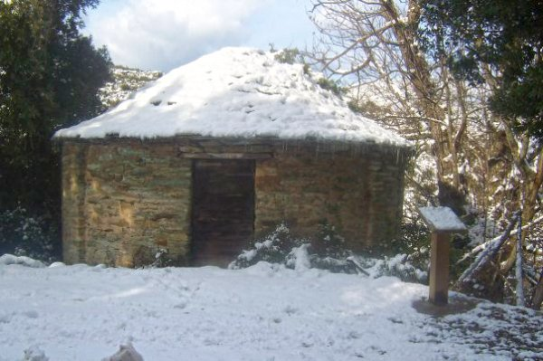 A nivera sous la neige